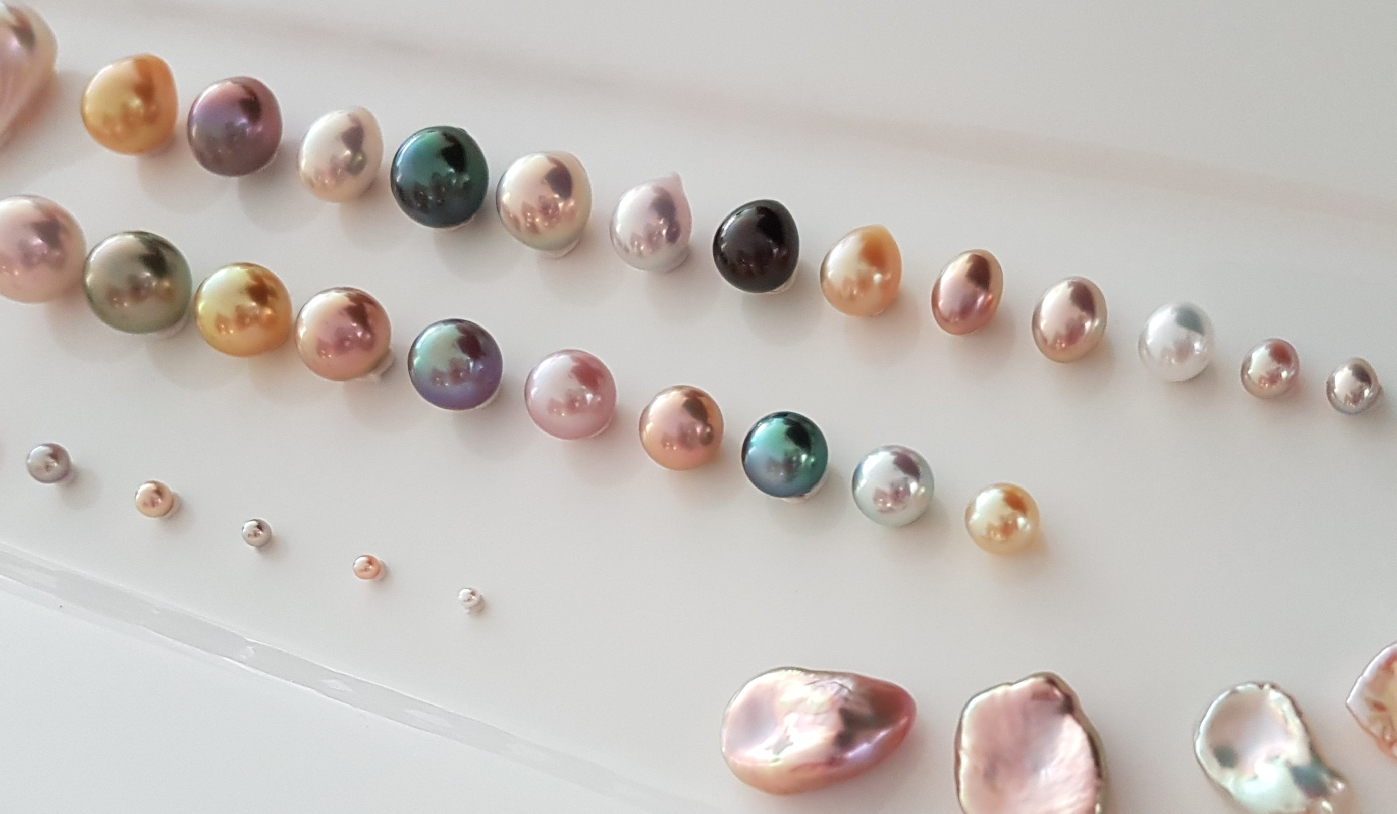 Zylana pearls: Handpicked and natural colours only!